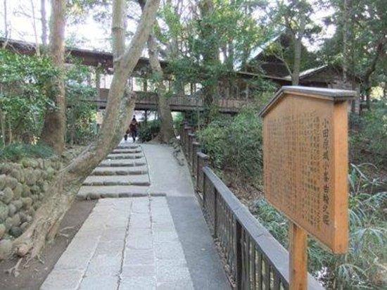 Odawara Castle Park: 小田原城址公園10