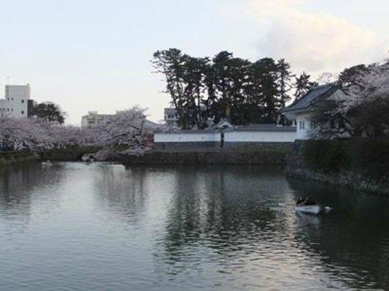 Odawara Castle Park: 小田原城址公園03
