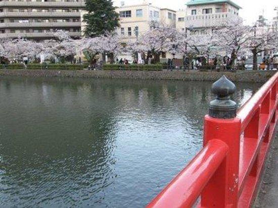 Odawara Castle Park: 小田原城址公園05