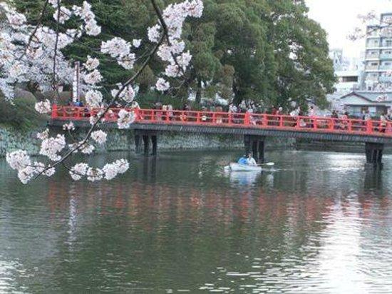Odawara Castle Park: 小田原城址公園01