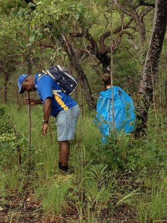 Guurrbi Tours: finding a lizard