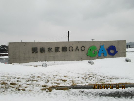 Oga Aquarium Gao : 冬でも開館してます