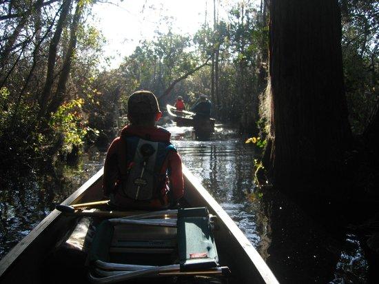 Okefenokee National Wildlife Refuge: Leaving Floyd's Island