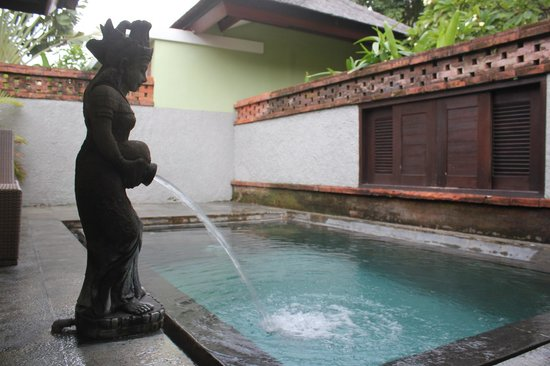 Rama Beach Resort and Villas: our private pool