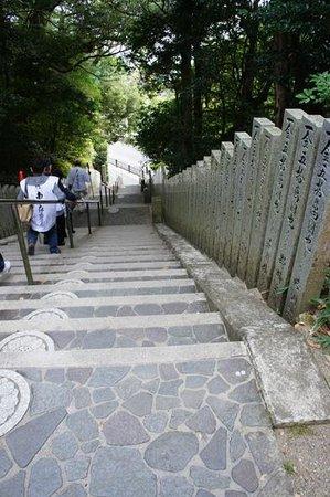 Kongochoji Temple: 階段を上から撮影