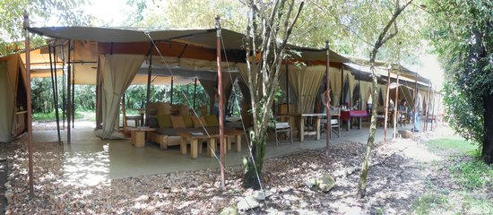 Naibor Camp: This is the dining and meeting room area which also overlooks the river and family of rhinos.