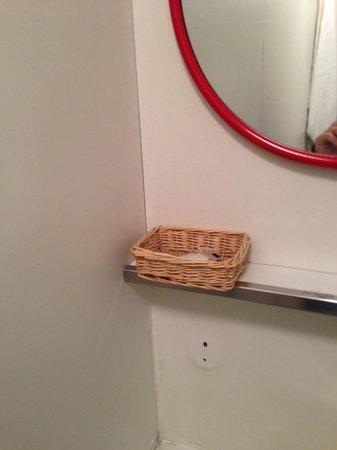 Lilium Hotel : Bagno in compensato