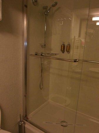 Ramada Iasi City Center: shower