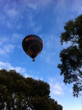 Seppelts View Cabins : Hot air balloon floated by one morning