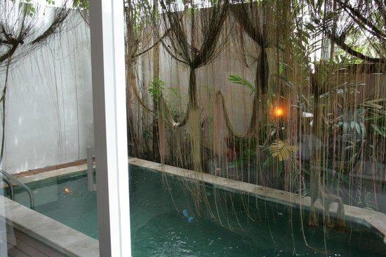 Elements Boutique Resort & Spa Hideaway : La piscine de la villa
