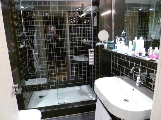 EuroPark Hotel: Superior Room - Bathroom