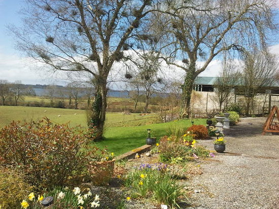 Springtime at lough Owel Lodge
