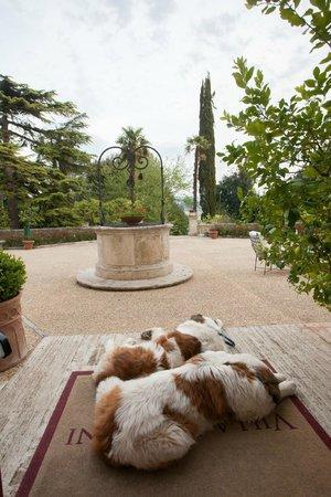 Villa Sabolini Hotel: ingresso dell'hotel