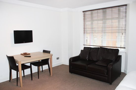 Endsleigh Court: Main studio room/sofa bed