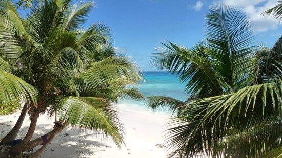 Patatran Village Hotel: Beach