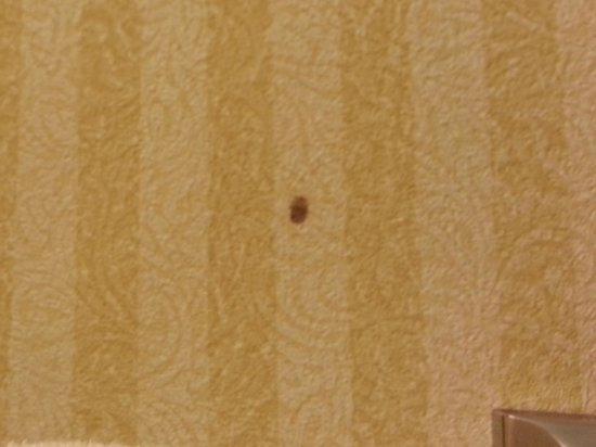 Comfort Inn East Windsor: Wallpaper stain