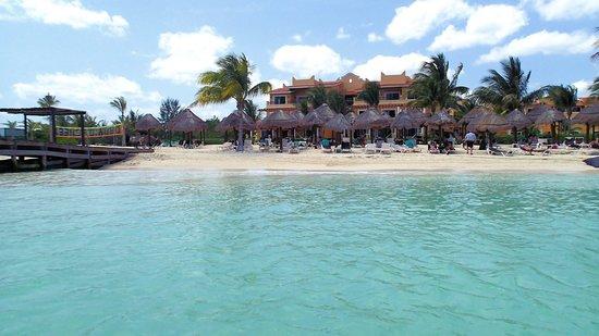 Secrets Capri Riviera Cancun : Beach