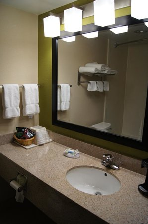 Best Western Adena Inn: Guest Bathroom 2013