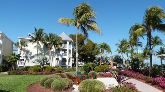 Hyatt Windward Pointe : Jardins