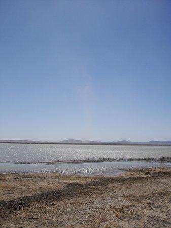 Chez Youssef: Surroundings - birds lake\Озеро с птицами