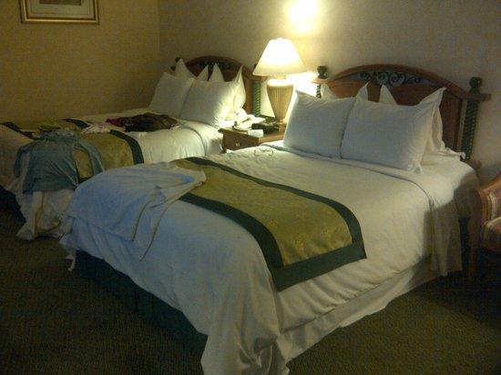 nice big room picture of the grand renai hotel kota bharu rh tripadvisor com sg