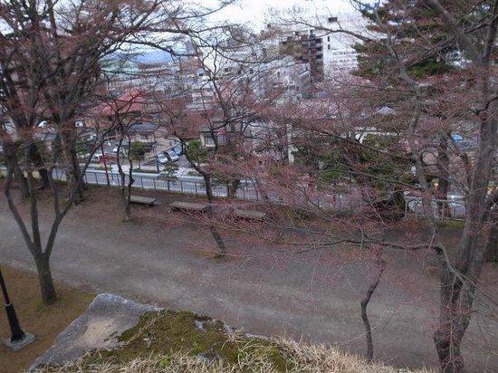 Morioka Castle Ruins: 本丸百足櫓跡あたりから見下ろす