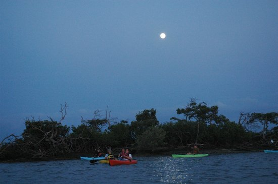 Up a Creek Kayak Tours: Darkness descends with Full Moon as our Guide