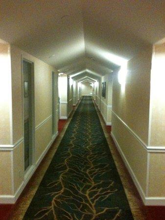 Hilton Houston North: Fifth floor