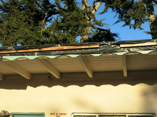 Casa Del Sol Motel: the leaky roof