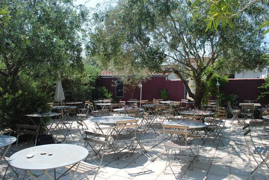 Grenier a Sel Le : terrasse sous les oliviers