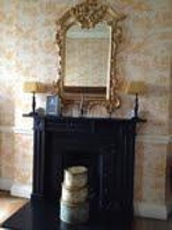 Castle Durrow: Fireplace in room
