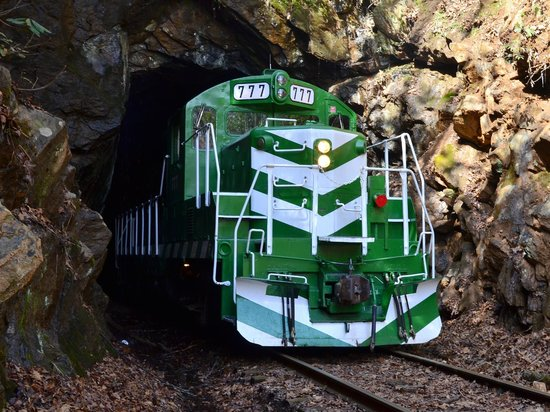 Bryson City, Kuzey Carolina: Cowee Tunnel