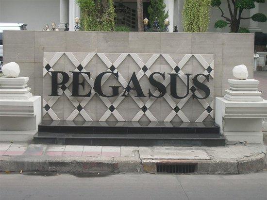 Pegasus Club Photo