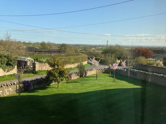 Hillview Farm Bed & Breakfast : View from our bedroom