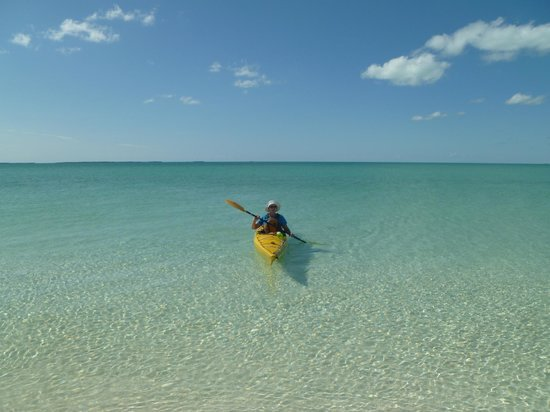 Out-Island Explorers Day Charters: Perfect day for a paddle