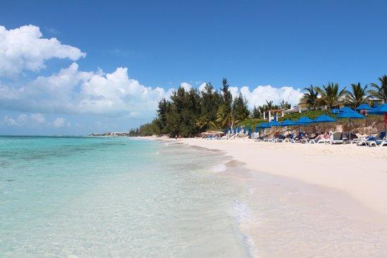 Windsong Resort: Brace Bay beach