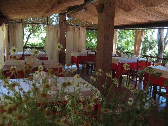 Sassetta, Italia: veranda esterna