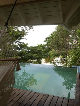 La Giralda : Plunge Pool