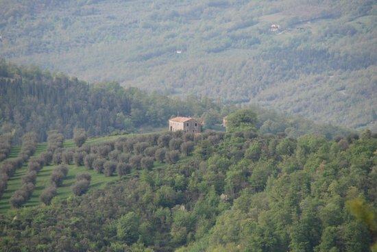 Tenuta Cortevecchia: Belvedere