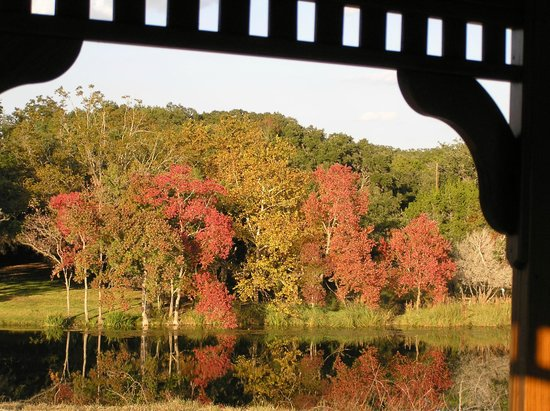 The Fig Preserve: View of the fall colors across the lake