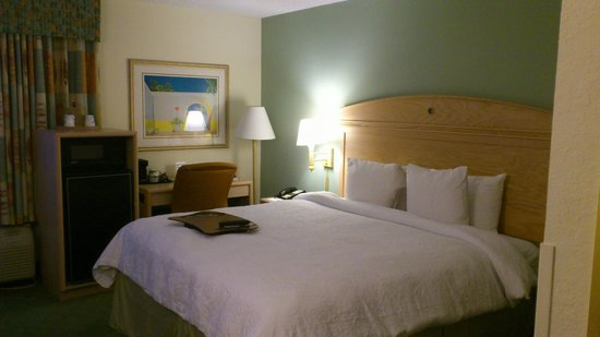Hampton By Hilton Miami-Coconut Grove/Coral Gables: SUITE