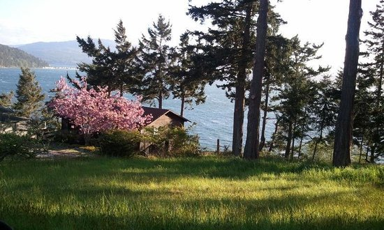 Huber's Inn Port Townsend: Spring blossoms.