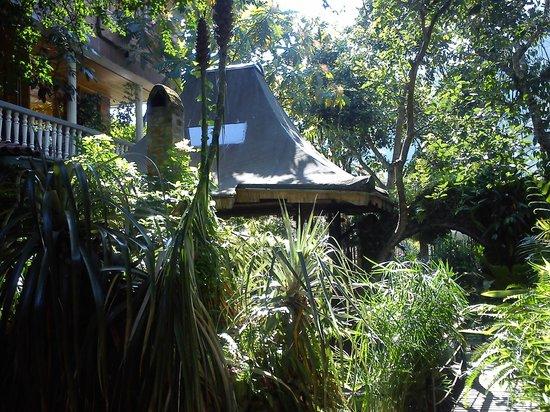 Hosteria y Spa Isla de Banos: garden
