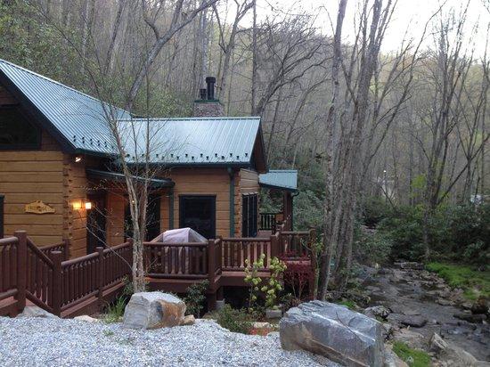 Cherokee Mountain Cabins: Treehouse cabin