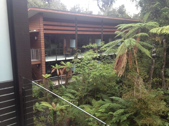 Te Waonui Forest Retreat: Rooms