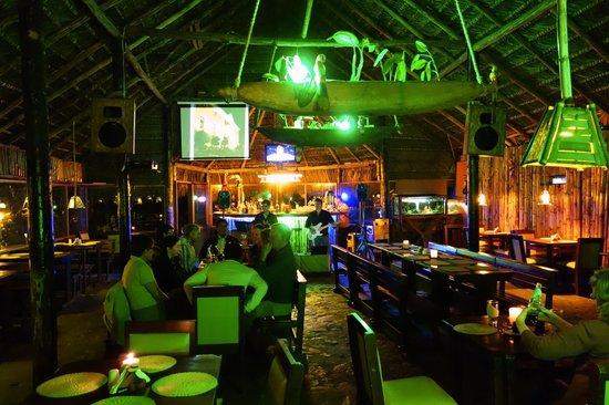 El chozon bar & grill: at night