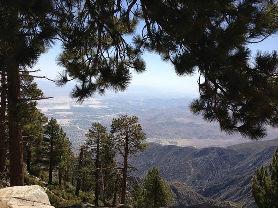 San Jacinto Mountain: My favorite view