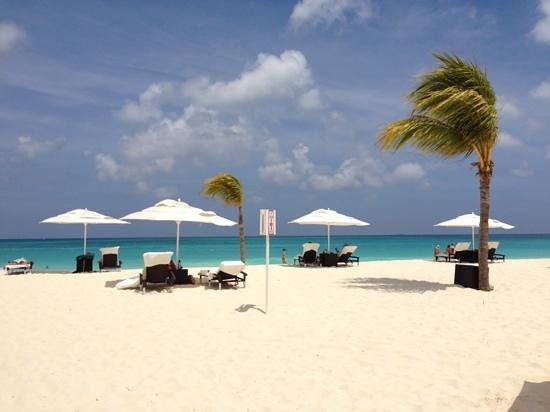 Bucuti & Tara Beach Resort Aruba Photo