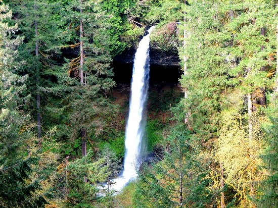 North Falls of Silver Falls State Park