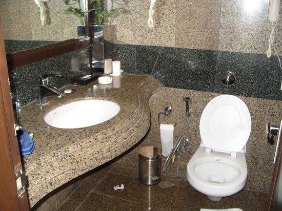 Hotel Shanti Palace (Mahipalpur): Loo